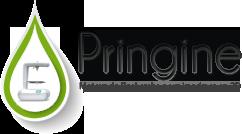 Logo Pringine
